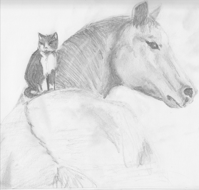 Horse w Cat on Back